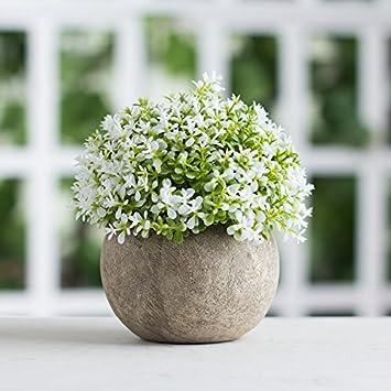SYHOME Künstliche Pflanzen Fake Blumen Topfpflanzen Retro In Schreibtisch  Decorationated Weiß