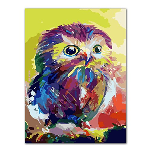 Miright Artistic DIY Oil Painting By Numbers Acrylic Owl Drawing On Canvas Home Office Decor Gift