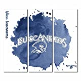 Blinn College Buccaneers Triptych Canvas Wall Art Watercolor (48x54 inches)