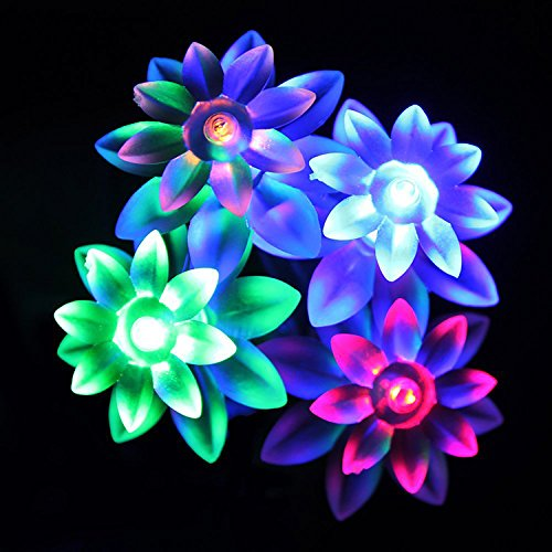 Kubert® Multi color Solar Powered String Light Outdoor 80 LED Lotus Flower Shaped Fairy Lights for Homes Globe Waterproof Garden Light, Christmas, Gardens, Wedding, Party Decoration Waterproof