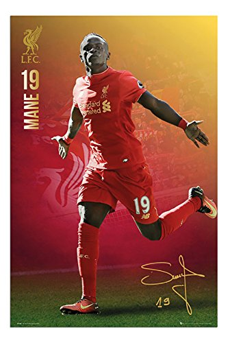 Liverpool FC Sadio Mane 2016 - 2017 Poster Gloss Laminated - 91.5 x 61cms (36 x 24 Inches)
