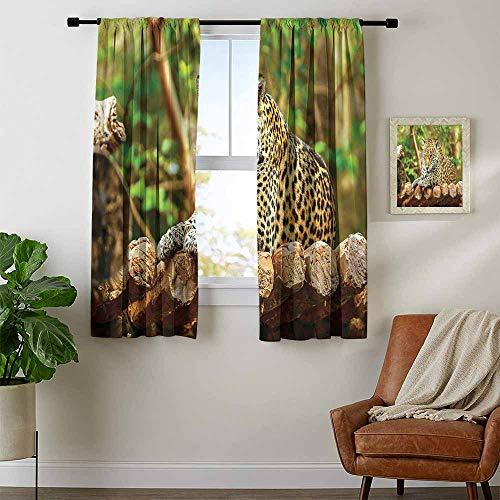 (Mozenou Zoo, Curtains Thermal Insulated, Jaguar on Wood Floor Wildlife Animals Feline Big Cat Mammal Predator Resting, Curtains Kitchen, W72 x L72 Inch Green Yellow Brown)