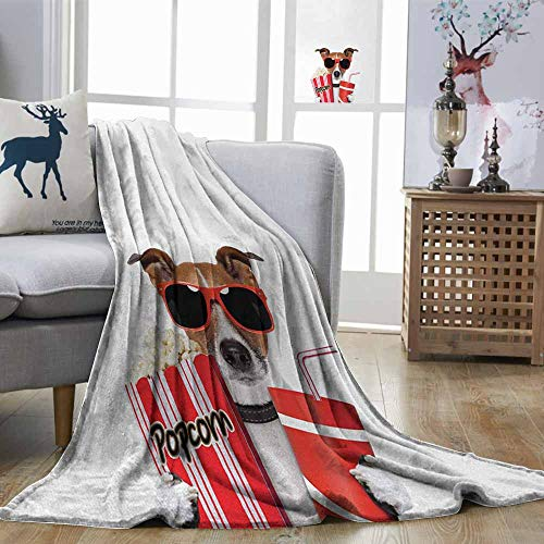 DILITECK Movie Theater Home Blanket Funny Dog Wearing Sunglasses Watching a Movie with Popcorn and Soda Print Easy to Carry Multicolor W54 xL84