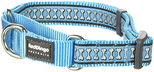 Red Dingo Martingale Collar Reflective Bones, Medium-Large, Turquoise