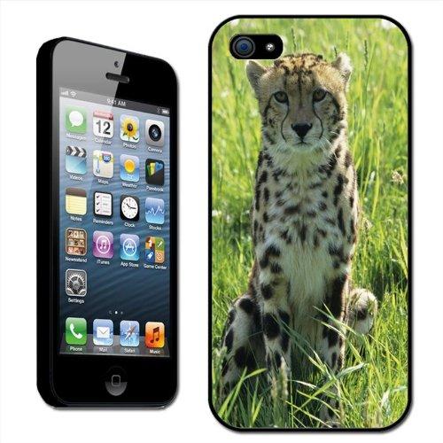"Fancy A Snuggle Schutzhülle, Hard Case für Apple iPhone 5, Motiv ""Afrikanischer Cheetah"", zum Anklippen"
