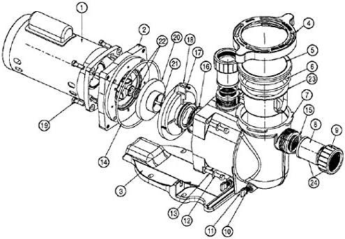 355619 Pentair SuperFlo Pump Housing O/'ring Replacement