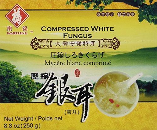 White White Mushroom - 6