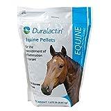 Duralactin Equine Pellets - 1.875 pound