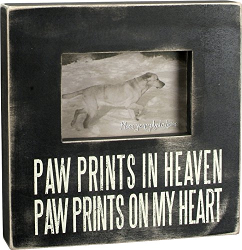 Primitives by Kathy Classic Box Frame 10 x 10-Inches Paw ()
