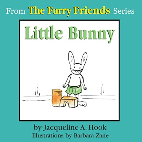Little Bunny (The Furry Friends Book 1)