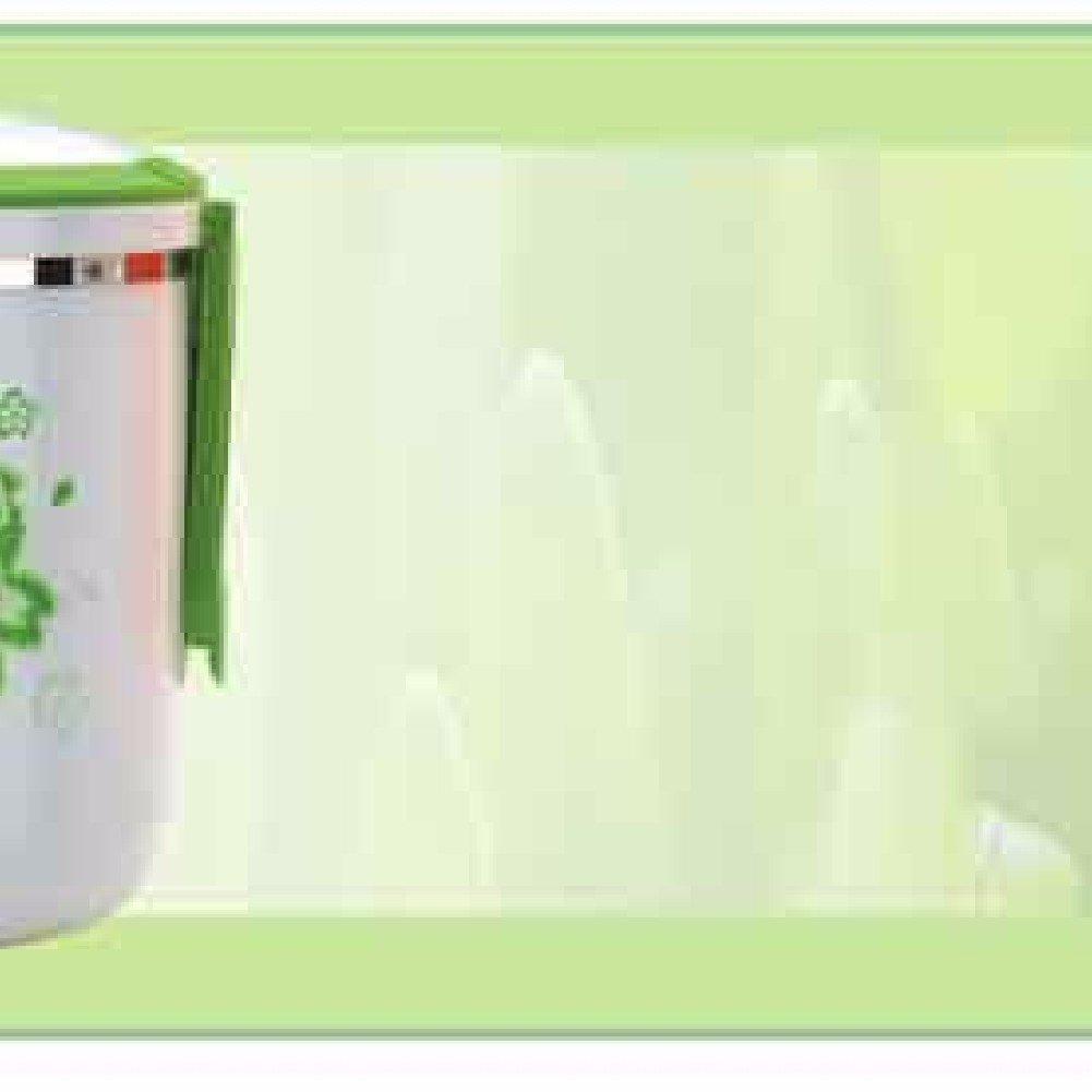SDKKY Student-Isolierung-Lunch-Boxen, niedlichen kreative Lunch-Boxen, Edelstahl Dämmung Fässer, tragbare Lunch-Boxen,Grün