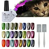 GEL LAB Soak Off Magnetic Gel Nail Polish Kit Set Pick Any 48 Colors With 1pc free Magnet sticker 10ml