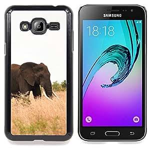 "Qstar Arte & diseño plástico duro Fundas Cover Cubre Hard Case Cover para Samsung Galaxy J3(2016) J320F J320P J320M J320Y (Elefante África Naturaleza Verano Colmillo"")"