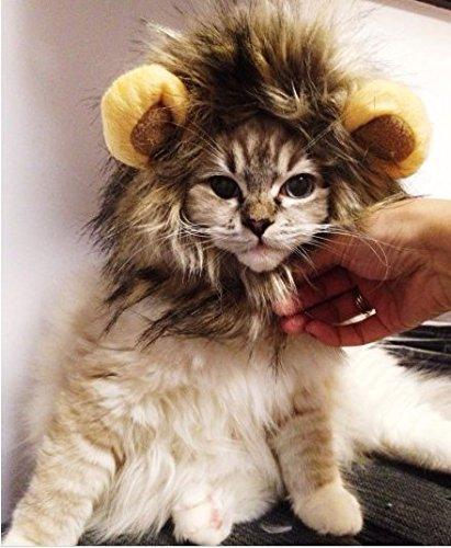 FowerYY Moda Creativa Peluca de Gato Mascota Divertido león patrón Headgear Mascota Cachorro Convertido Headgear