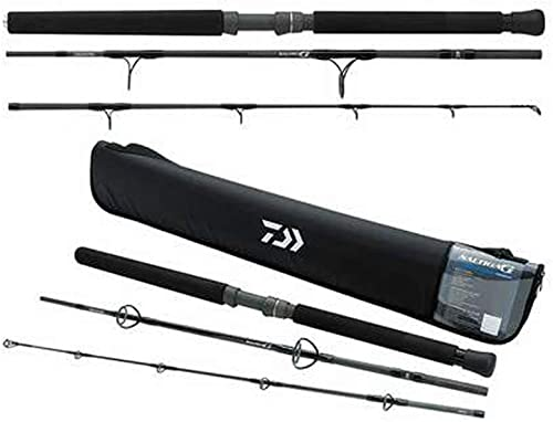 Fenwicks World Class Casting Fishing Rod