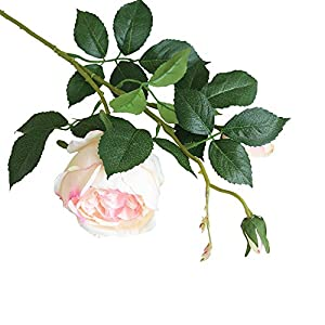 FILOL Artificial Rose Flower Leaf Floral Bridal Wedding Bouquet Home Wedding Decor Fake Flowers Party Decor Real Touch Flower (C) 53