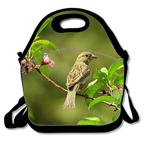 Perch Plant Sparrow Polyester Lunch Bag Washable Lunch Box For Boys (Sparrow Lunch)