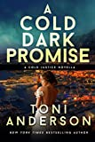 A Cold Dark Promise (Cold Justice Series: FBI Romantic Suspense Book 9)