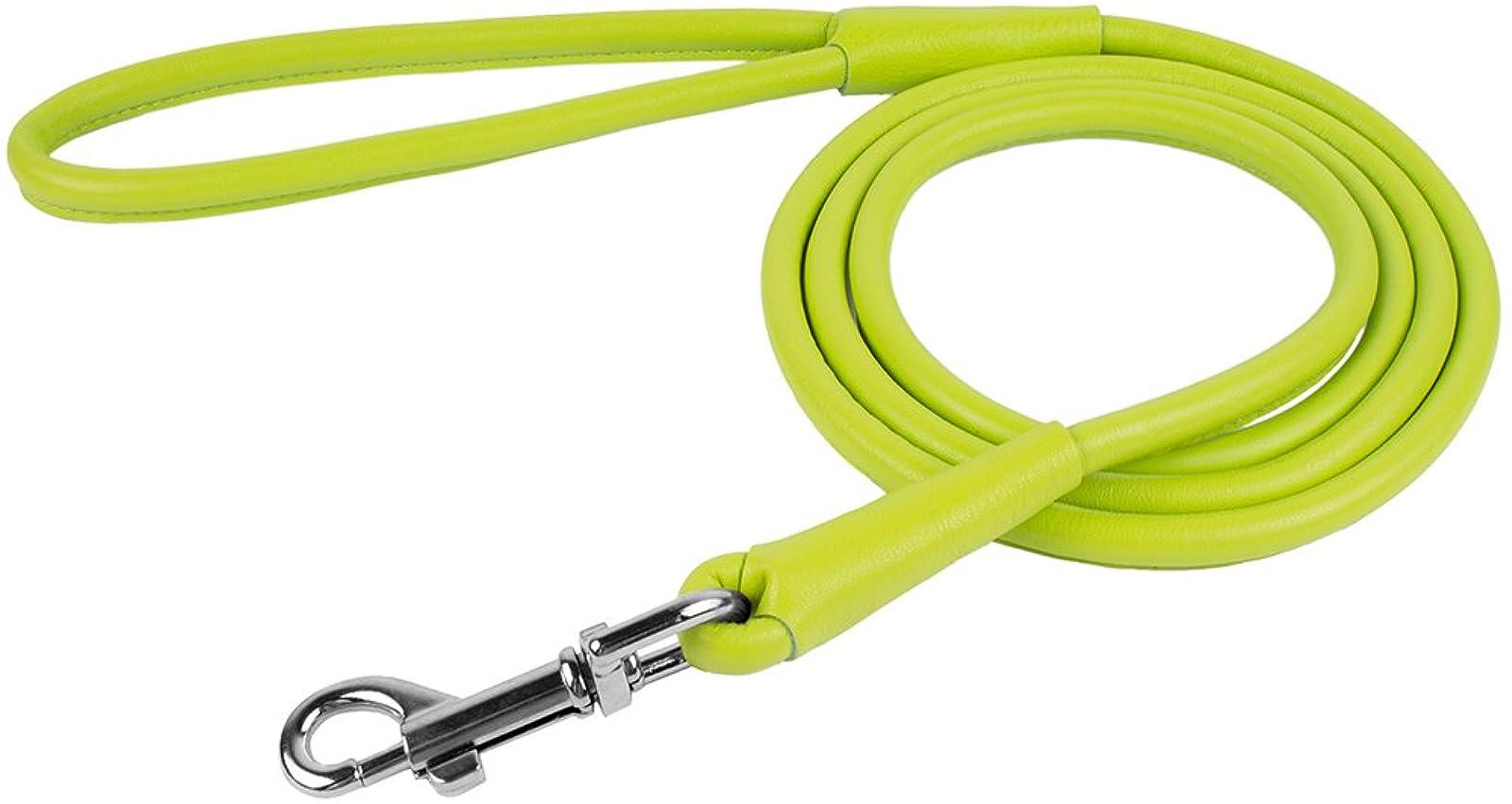 CollarDirect Rolled Leather Dog Leash 4ft Soft - 5