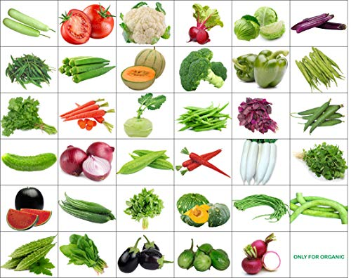 35 Varieties of Seeds with Instruction Manual – 1600+ Seeds