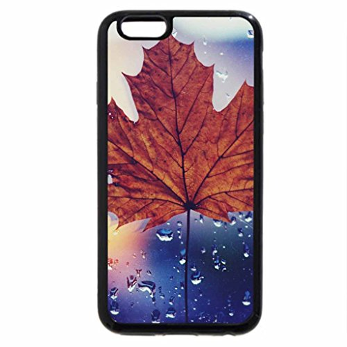 iPhone 6S / iPhone 6 Case (Black) Dried Maple Leaf