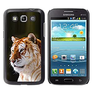 Planetar® ( Tiger Orange Fur Big Cat Africa Tropical ) Samsung Galaxy Win / I8550 / I8552 / Grand Quattro Fundas Cover Cubre Hard Case Cover