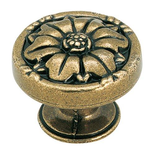 Natural Elegance 1-5/16 in (33 mm) Diameter Burnished Brass Cabinet Knob