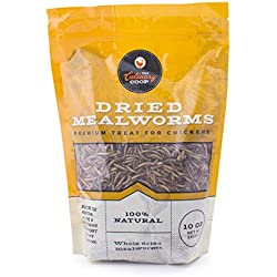 Flukers 15002 The Culinary Coop Dried Mealworm Treat For Chickens, 10 Oz