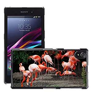 Print Motif Coque de protection Case Cover // M00126815 África Animal Pico Pájaro en color // Sony Xperia Z1 L39 C6903 C6906 C6943 C6902