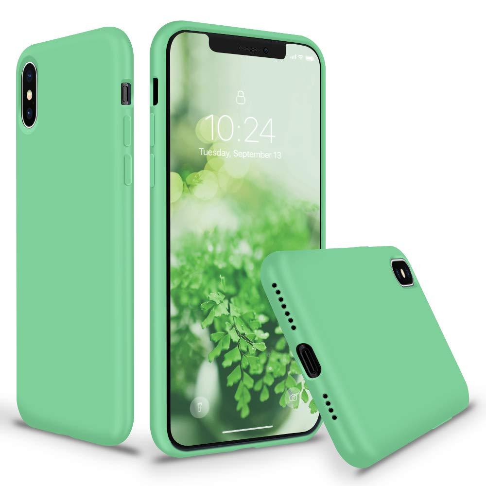 iphone xs max case spearmint