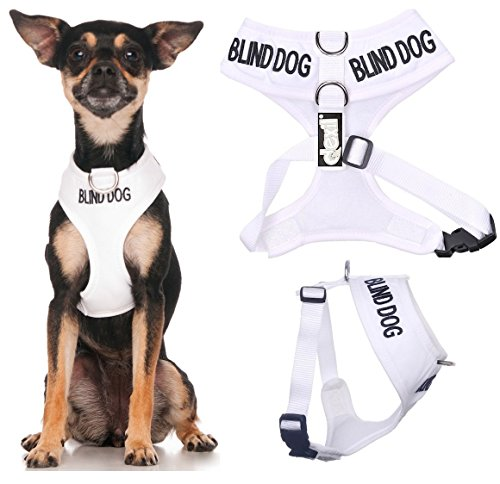 BLIND DOG (Dog Has Limited/No Sight) White Color Coded Non-Pull Front and Back D Ring Padded and Waterproof Vest Dog Harness PREVENTS Accidents By Warning Others Of Your Dog In Advance (XS)