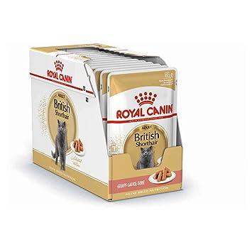 ROYAL CANIN British Shorthair Comida para Gatos - Paquete de 12 x 85 gr - Total: 1020 gr: Amazon.es: Productos para mascotas