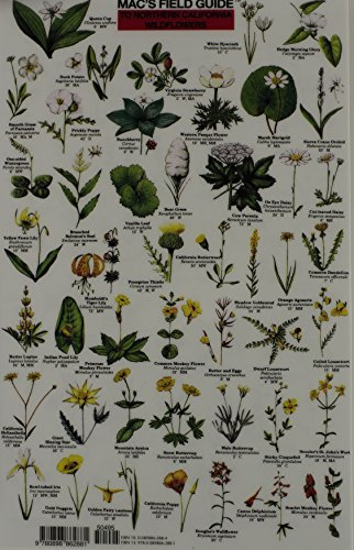 Mac's Field Guide To Northern California Wildflowers