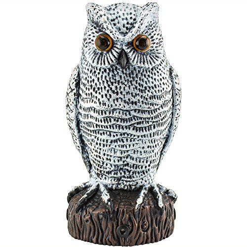 Owl Scarecrow Great Horned (Hoont Scarecrow Owl Decoy Pest Bird and Rodent Repellent with Scary Flashing Eyes + Frightening Sound – Motion Activated with Multi-directional Sensors -Frightens Birds, Squirrels, etc. [UPGRADED])