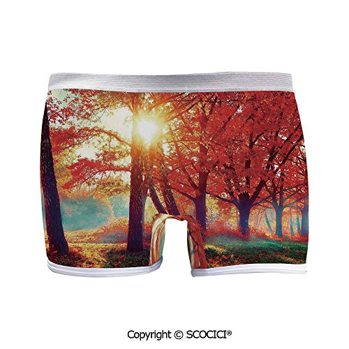 (SCOCICI Women Boyshort Panties Autumnal Foggy Park Fall Low-Rise Briefs)