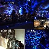 RONSHE 20W UV LED Black Light Flood Light with US