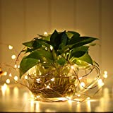 LE 3 Pack LED Copper Wire String Fairy String Lights Battery Powered 60 LED 19.6ft Fairy Starry Lights Waterproof Fairy Firefly Lights for Garden Patio Party Valentine's Day Wedding Christmas Tree