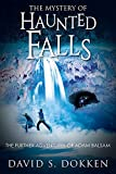 img - for The Mystery of Haunted Falls: The Further Adventures of Adam Balsam book / textbook / text book