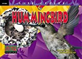 Hummingbird, David M. Schwartz, 1574715585