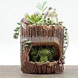 EE Frog Kitchen Herb Cactus Resin Planter Window Sill Box Garden Plant Pot Case
