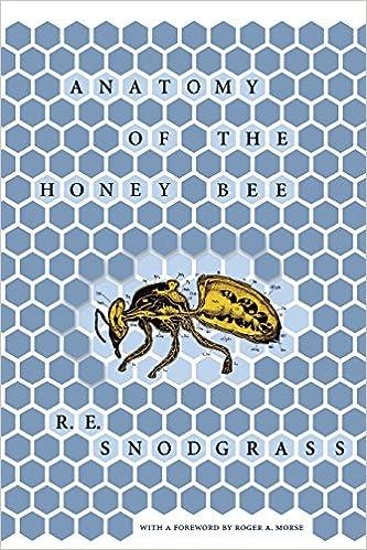 Anatomy Of The Honey Bee Comstock Book R E Snodgrass Roger A