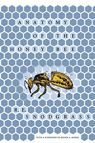 Anatomy of the Honey Bee (Comstock Book)