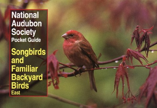 National Audubon Society Pocket Guide to Songbirds and Familiar Backyard Birds: Eastern (Audubon Pocket Guide)
