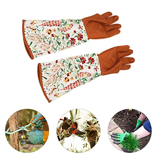 Shears - Sleeve 1 Pair Hand Waterproof Pruning Trimming Protecting Thickened Glove Tool - Professional Medium Thornproof Florist Resistant Gloves Thorn Gauntlet Cordless - 1PCs by Unknown