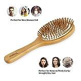 Nipoo Wooden Paddle Hair Brush + Free Mini