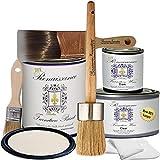 Retique It It by Renaissance RFP-DSKit-IvoryTower Furniture Paint, Deluxe Starter Kit, Ivory Tower 02-Antique White