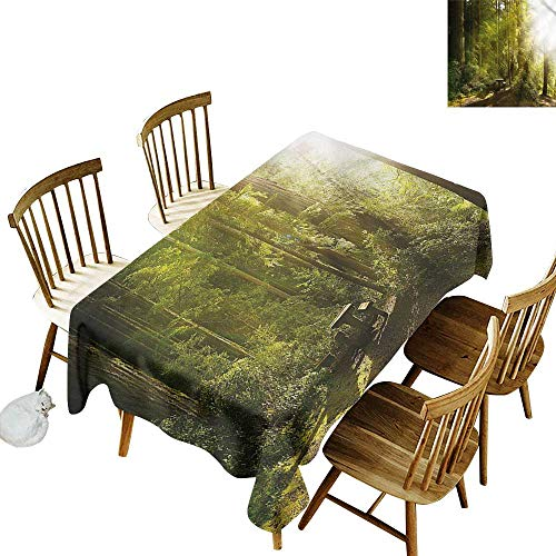(one1love Tablecloth for Kids/Childrens Nature Sunny Rainforest Wood Bench Dinner Picnic Table Cloth Home Decoration 50