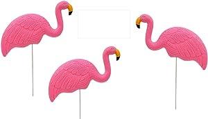 Pink Flamingo Lawn Ornaments - Plastic Pink Flamingos (3) Charity - Flamingo Decor