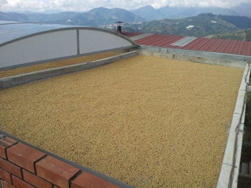 Raw Unroasted Green Coffee Beans - Special micro Farm La Compañia (5 Lb)