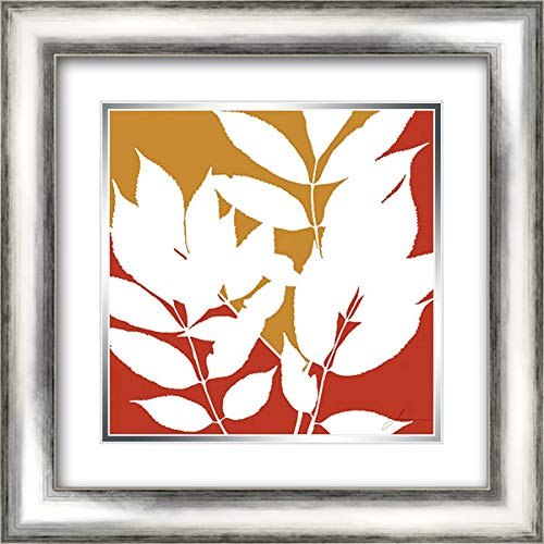 Split Stem III 20x20 Silver Contemporary Wood Framed and Double Matted Art Print by Burghardt, ()